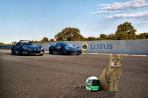 Lotus takes the lead with new cat helmets (April Fools) 2