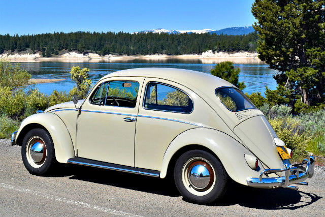 The Weekly Driver Podcast, Episode 7, 1959 Volkswagen Bug